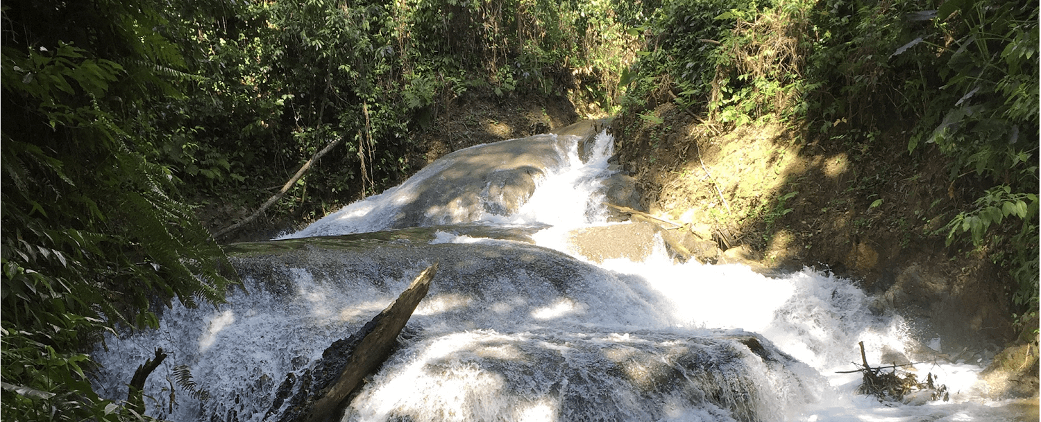 Fenton Falls, the the Best Waterfalls Near Negril, Jamaica